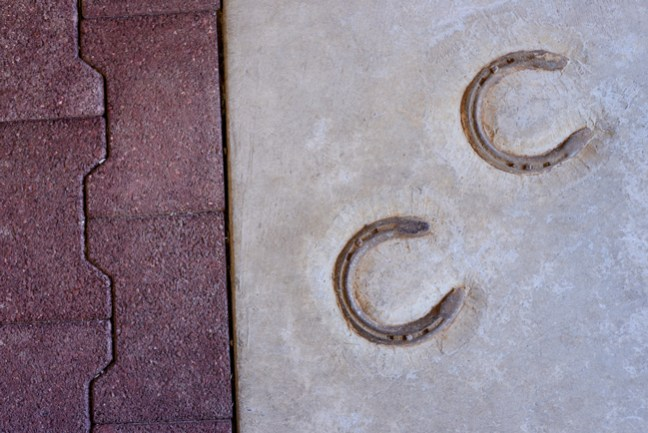 horseshoes next to the rubber pavers