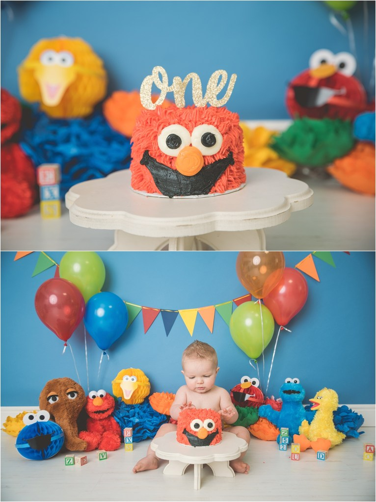 Stacey-Hansen-Photography-Sesame-Street-Cake-Smash-Logan-Utah-Cake-Smash-Photographer (2)