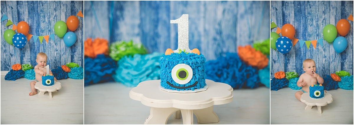 Munk Monster Cake Smash Logan Utah Cake Smash Photographer