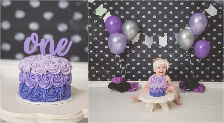 Hill Purple and Grey Logan Utah Cake Smash