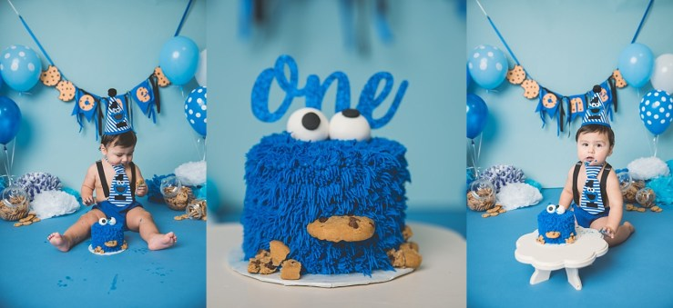 Cookie Monster Cake Smash Utah Photographer