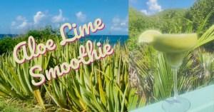 Aloe Lime Smoothie