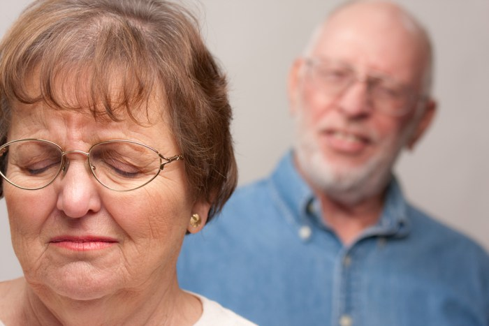 Domestic Violence and the Elderly