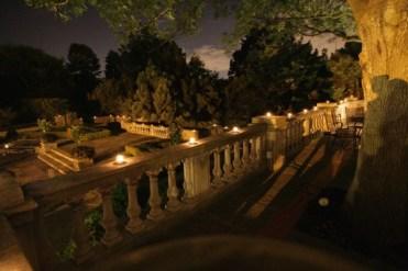 nighttime gardens