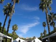 Palmy w Parque Maria Luisa