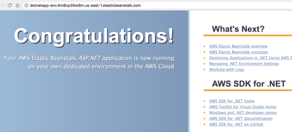 Creating a .NET Application in AWS Beanstalk - Screenshot of finished step