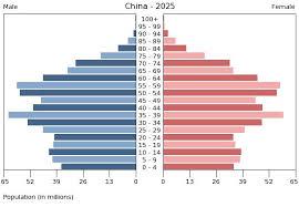 Population Pyramid China 2025