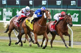Waltzing Matilda - New York Stakes (Gr.2), Belmont Park