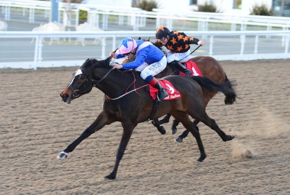 Harvestfortheworld winning at Dundalk