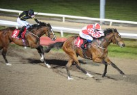 Zihba winning at Dundalk