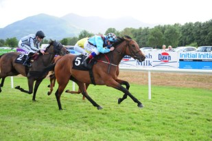 Dream Ascot winning at Killarney
