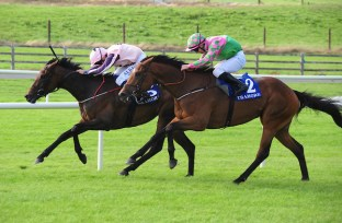 Tramore 18-8-18 TOOREEN KATIE & Chris Hayes (left) win the Ashtown House Stud Fillies Maiden from GRASPING AT STRAWS & Gary Carroll (right) (Photo Healy Racing)