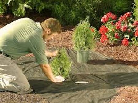 landscaping as part of home remodeling