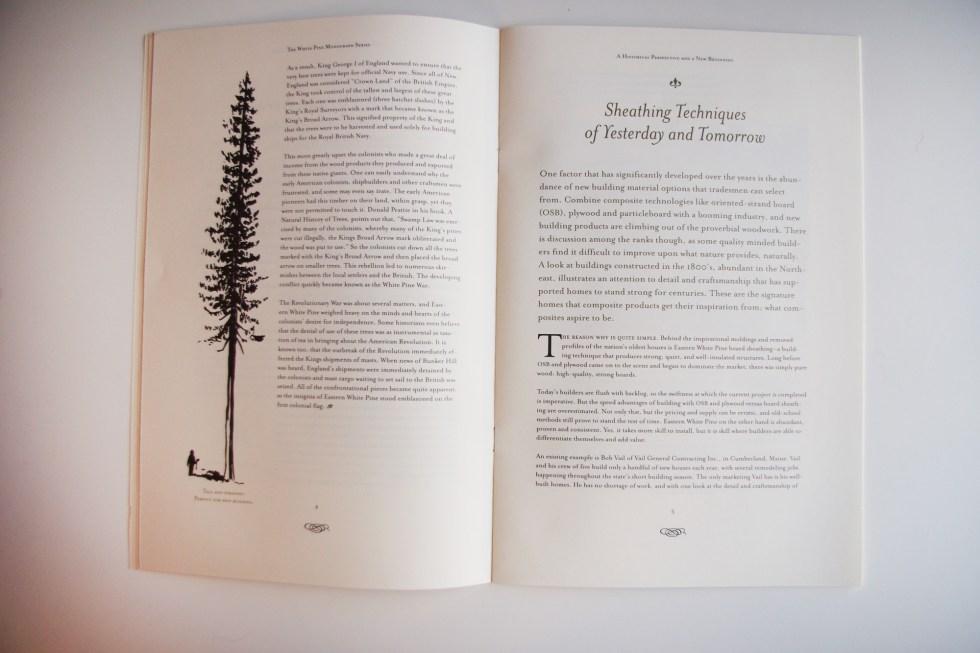 white-pine-2