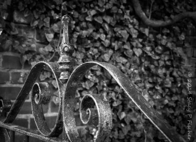 Converted b&w photo of iron gate, now post-processed in Lightroom.