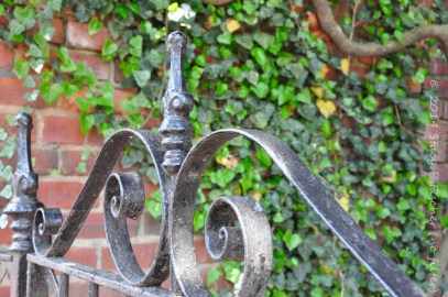 Top finial and scrollwork of an iron gate against a backdrop of brick and ivy; in color.