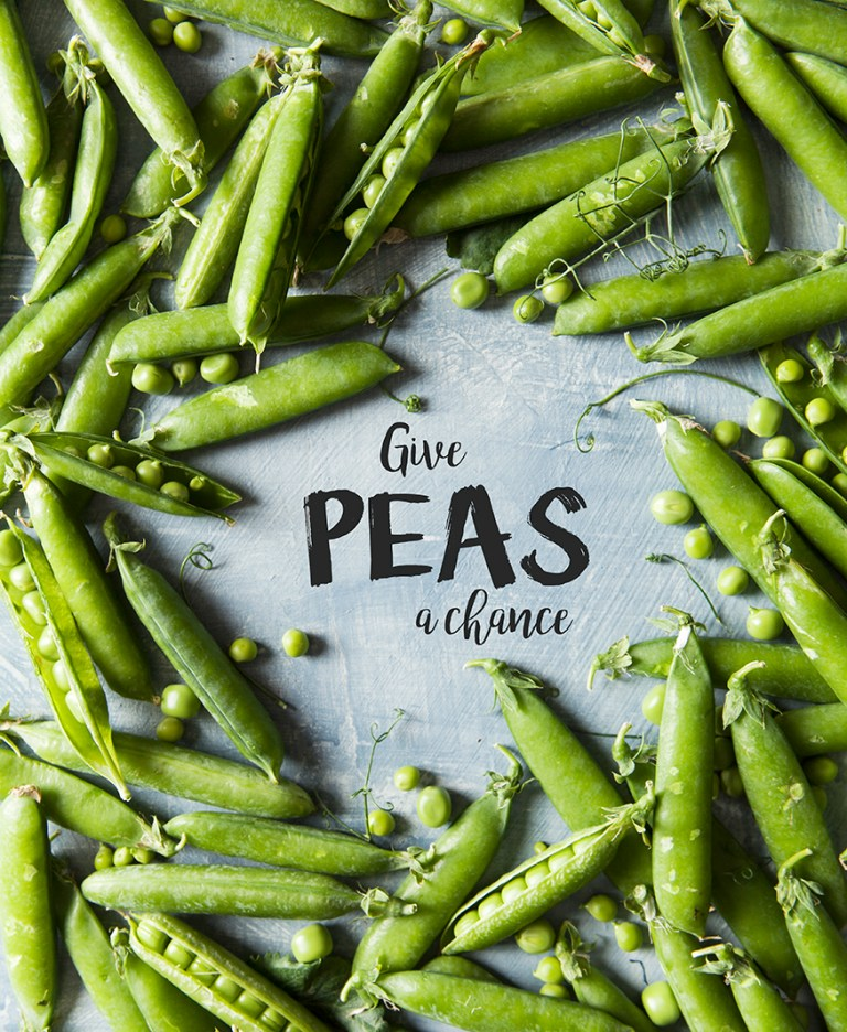 Give Peas a chance by Stacy Grant