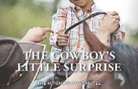 cowboy romance book