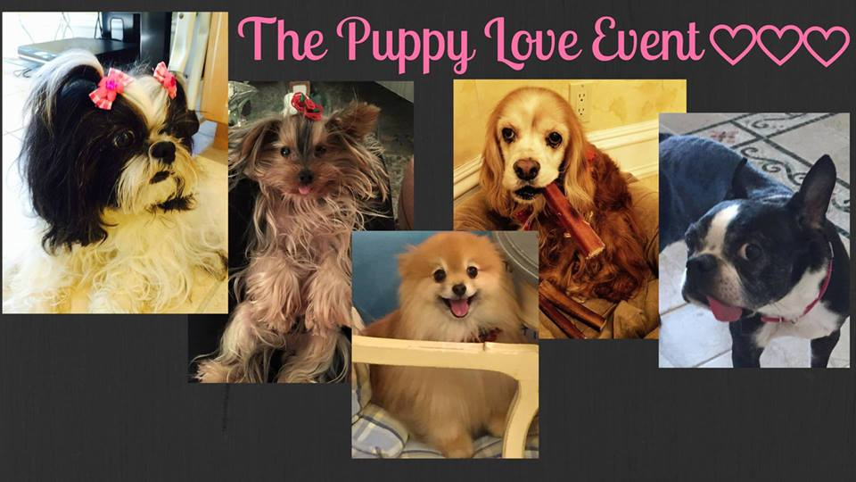 puppy love event at lv2bfit ryebrook