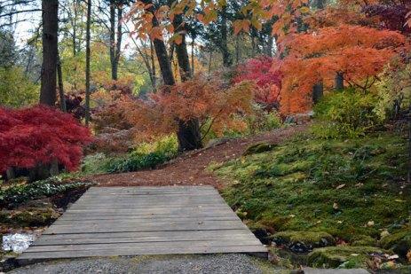gardens Mt. KiscoSteinhardt