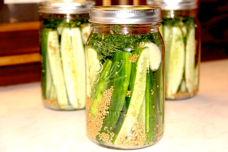 Refrigerator Dill Pickles stay crunchy, are easy to make, and did I say..DELICIOUS!!