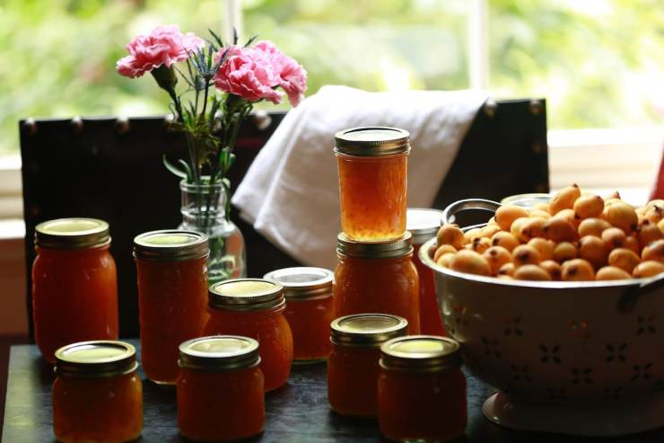 Loquat Jelly - One of Life's Most Treasured Gifts!