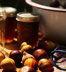 Stacy Lyn's fig preserves recipe