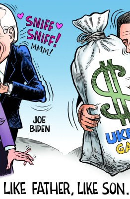 Joe Biden cartoon