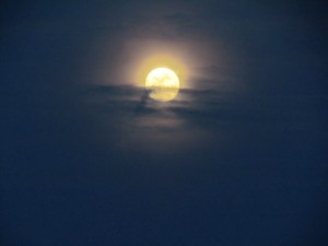 August9_2014_Moon1