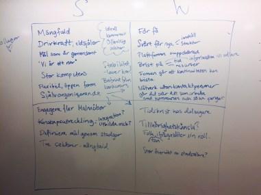 SWOT_natverket