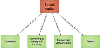Illustration 4: Exempel på vad socialt kapital kan leda till enligt Putnam: Ökade demokrati, ökad möjlighet att utveckla sina talanger och kunskaper, ekonomiskt välbefinnande och möjlighet till att hitta nya arbetstillfällen genom det sociala nätverket. Förklarat i teoretiska termer kan man säga att man växlar in socialt kapital till andra kapitalarter, t ex ekonomiskt kapital, human kapital mm.