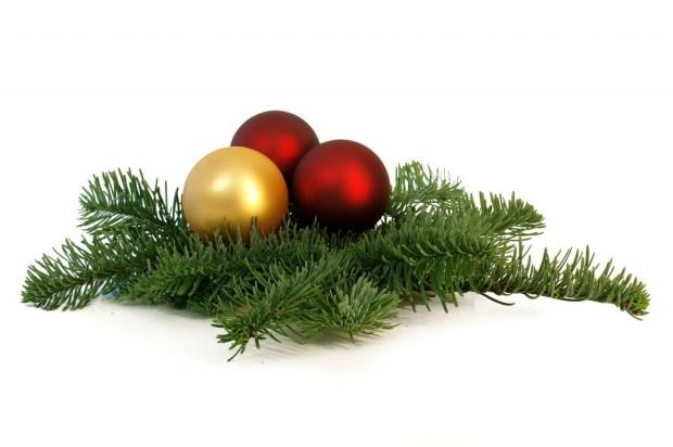 Deze afbeelding heeft een leeg alt-attribuut; de bestandsnaam is kersttak.jpg