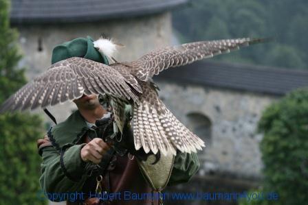 Flugshow-Burg-Hohenwerfen-002