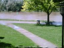 Aschaffenburg Hochwasser 2. Juni 2013 - 1