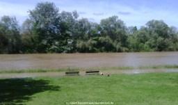 Aschaffenburg Hochwasser 2. Juni 2013 - 2