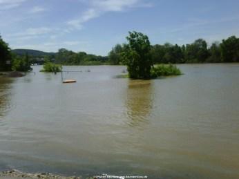Aschaffenburg Hochwasser 2. Juni 2013 - 8