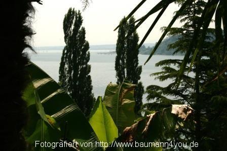 Auf der Insel Mainau - Bodensee