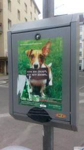 Bekanntester Hund Wien