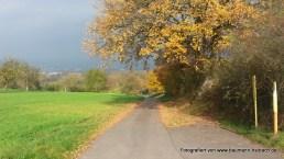 Schweinheim Weg zum Bischberg