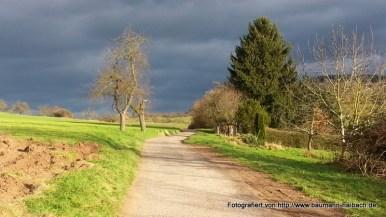 Spaziergang rund um den Ludwigstempel Aschaffenburg