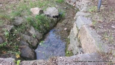 Brunnenstube Haibach Wendelberg 005