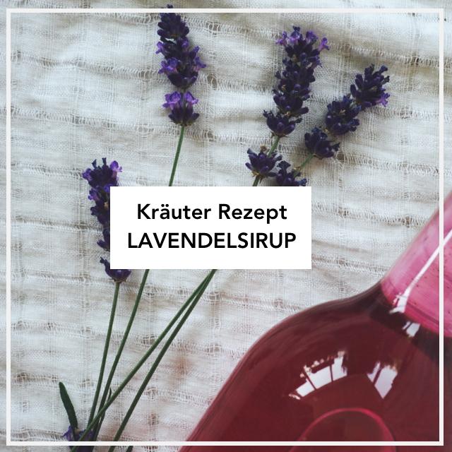 Lavendel Sirup Rezept
