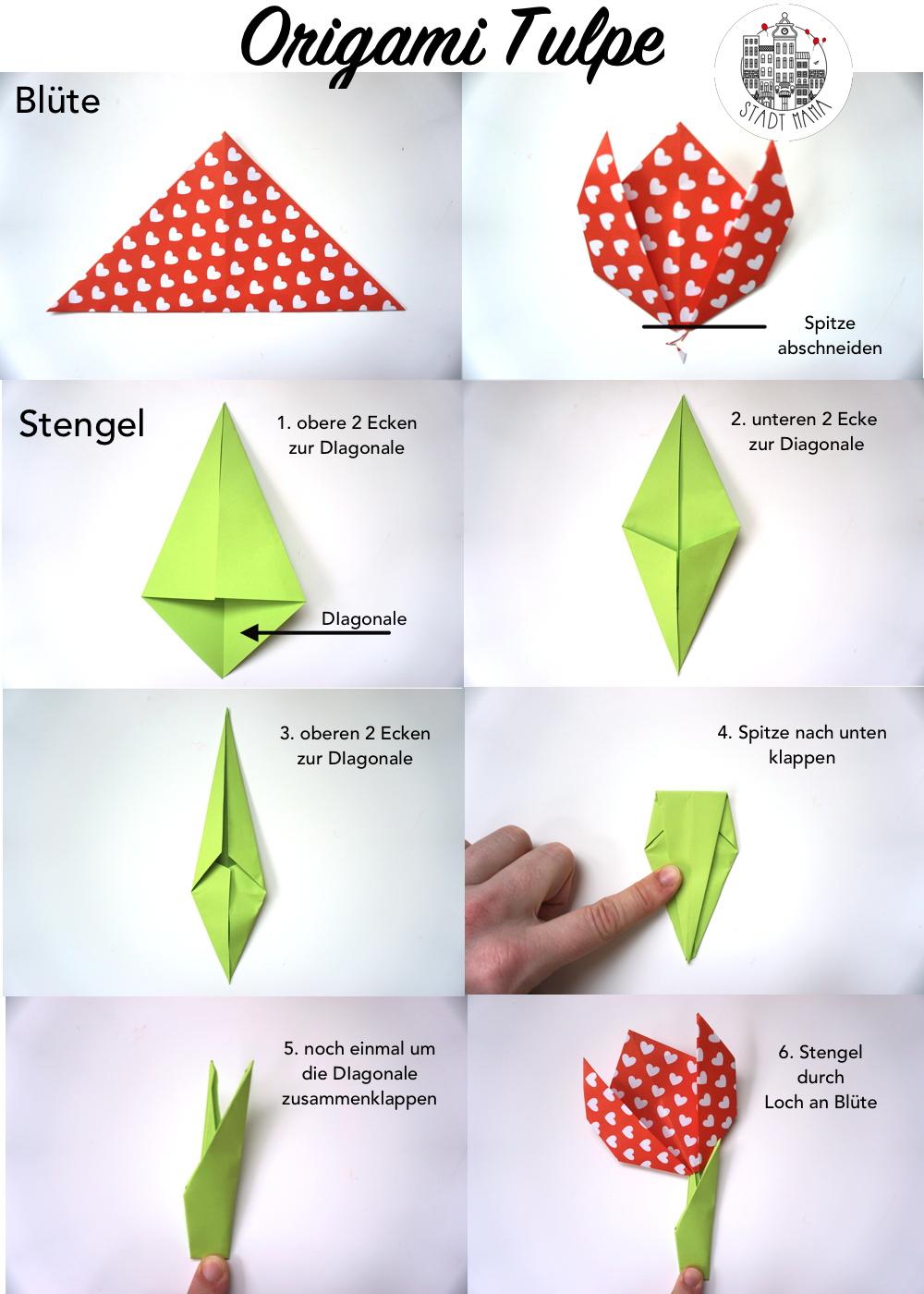 3 simple origami ideen f r kinder h schen tulpe und hund. Black Bedroom Furniture Sets. Home Design Ideas