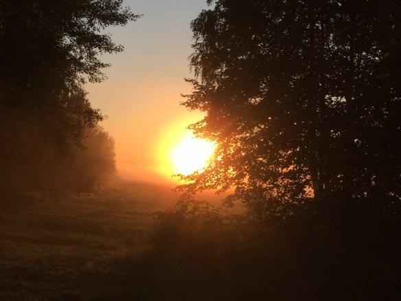Sönnenaufgang, Herbst, Lübben/Spreewald