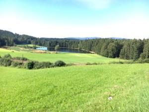 Landschaft bei Spiegelau