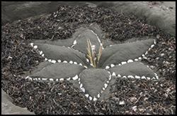 sand sculpture festival2_palette15