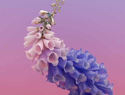 Audio: Flume - 'Never Be Like You' (Martin Solveig Remix)