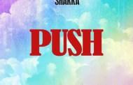 Audio: Incisive - 'Push' (ft Shakka)