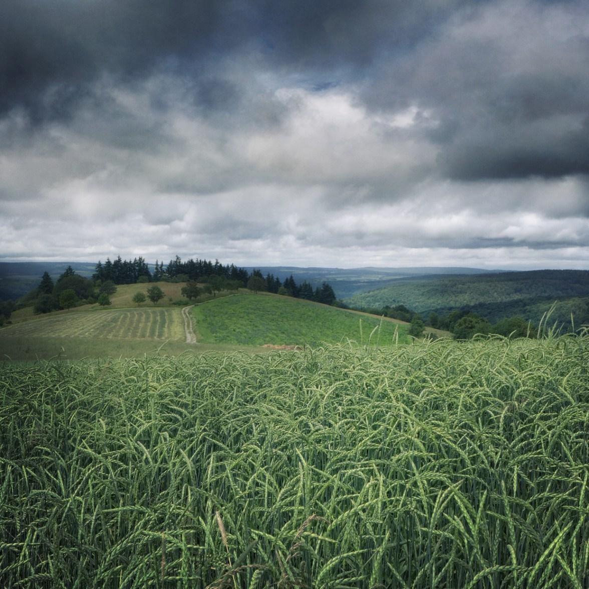 Leaving the Valley Behind © Bernd Webler