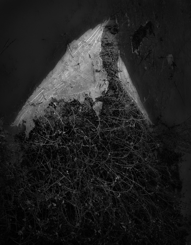 Winters Cloak © Aryan Chappell